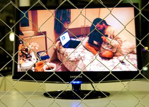 Avtorica Valerie Wolf Gang je svojo instalacijo predstavila na način, ki človeško vrsto prikazuje kot osrednja bitja v zamenjanih vlogah. Šest zaslonov, s staknjenimi hrbti v obliki kroga postavljenih v osrednji del razstavnega prostora katere obiskovalci lahko opazujejo skozi žičnato ograjo. Vsak video predstavlja posnetek s statično kamero v realnem času brez montaže, zato simbolno nakazuje prostor ali »kletko«, v kateri se nahaja človeški osebek. Na ograji vsakega posnetka je pritrjena ploščica, ki vsebuje fotografijo primerka na posnetku in nekaj osnovnih informacij – katere rase je, od kod prihaja, starost, težo in druge značilnosti – tako kot v čisto pravem živalskem vrtu.